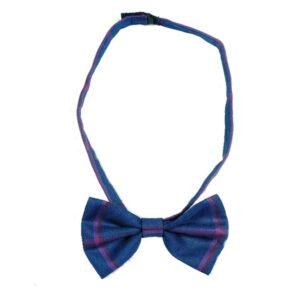 budaboss smart bow tie